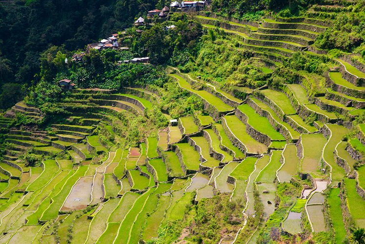 Rice terraces in the Philippines. The village is in a valley amo