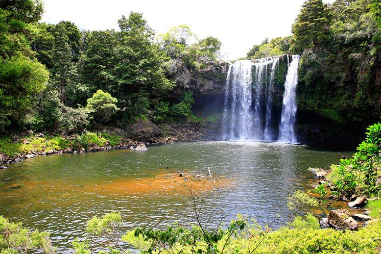 Beautiful waterfall with greenery in New Zealand.