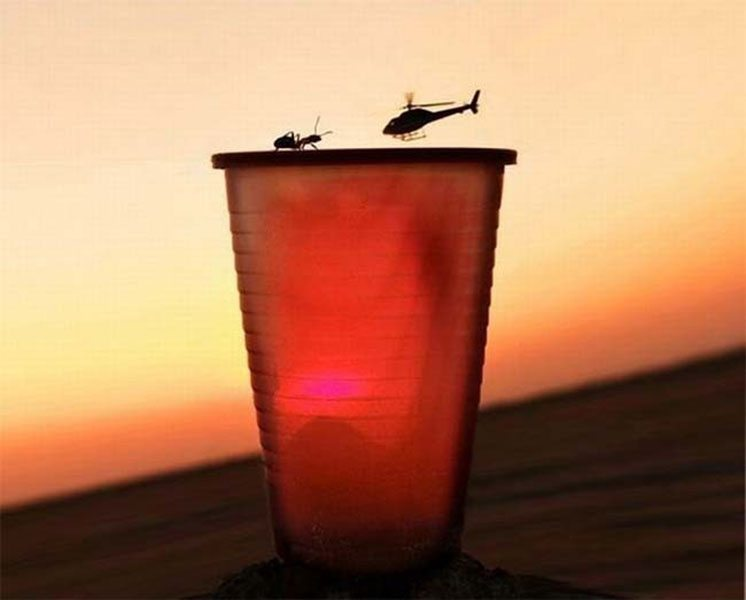 33-ant-over-the-rim-of-a-plastic-cup-and-a-helicopter