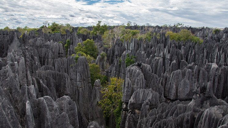 Tsingy de Bemaraha.