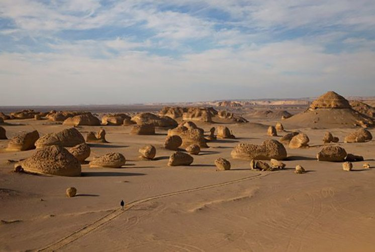 valley-of-the-whales-egypt